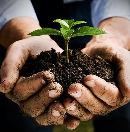 Země léčí naše těla i duše